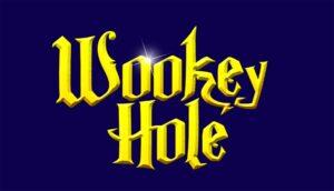 2011 new wookey logo1 (2)